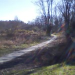 Nature trail that veers off from Jackson Park path and loops back around to it.